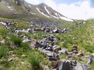 サイマルタッシ、散乱する岩絵18年8月